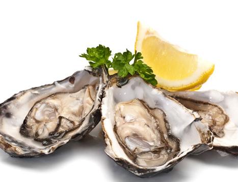 Hàu biển - Thực phẩm quý như vàng dành riêng cho cánh mày râu?