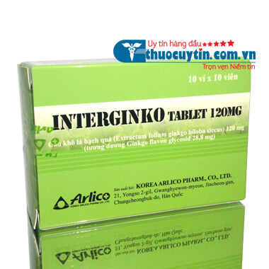 INTERGINKO TABLET 120MG